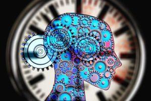 cerveau stimulé par la curiosité, boosté