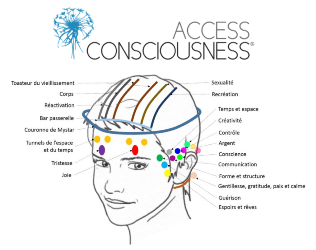 schéma des points d'activation access bar® sur la tête